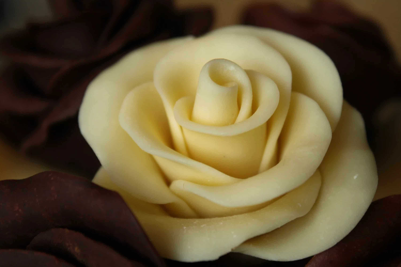 Шоколадная розочка